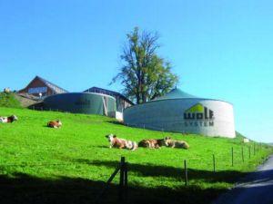 Budowa biogazowni rolniczej z firmą Wolf System