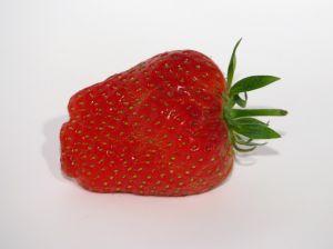 Co zaszkodziło truskawkom?